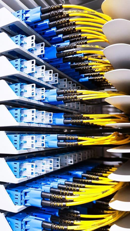 Cavi a fibre ottiche ad alta velocit? variopinti collegati al commutatore dell'attrezzatura dei server di rete della nuvola dentr fotografie stock libere da diritti