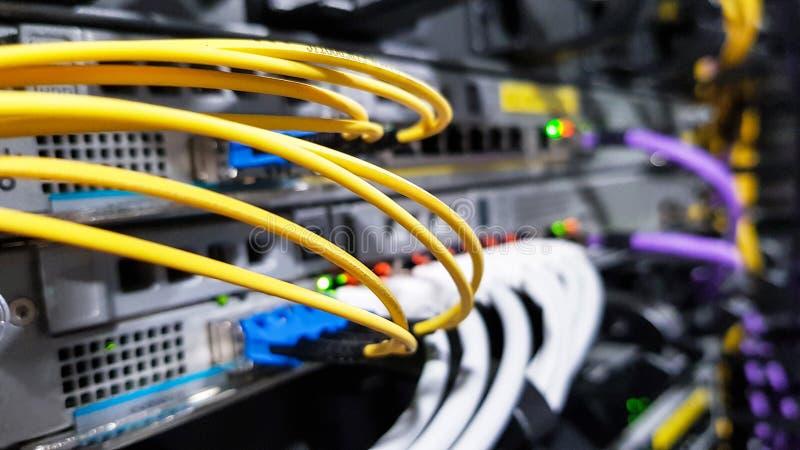 Cavi a fibre ottiche ad alta velocit? variopinti collegati al commutatore dell'attrezzatura dei server di rete della nuvola dentr immagini stock