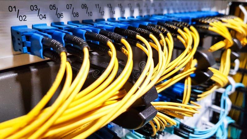 Cavi a fibre ottiche ad alta velocit? variopinti collegati al commutatore dell'attrezzatura dei server di rete della nuvola dentr fotografie stock