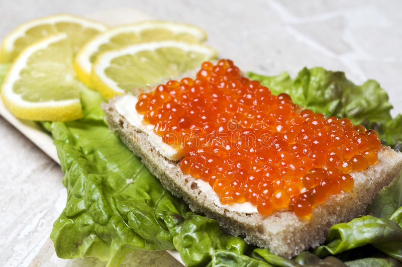 Caviale di color salmone immagini stock libere da diritti