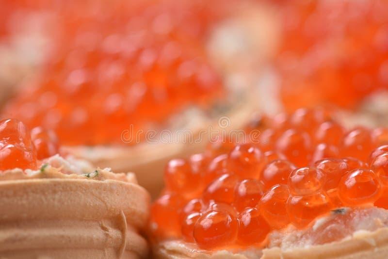 Caviale Tartlets con il caviale rosso Fine dell'alimento gastronomico su, aperitivo fotografia stock
