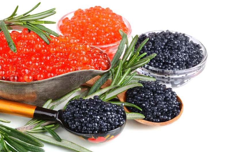 Caviar avec le romarin image libre de droits