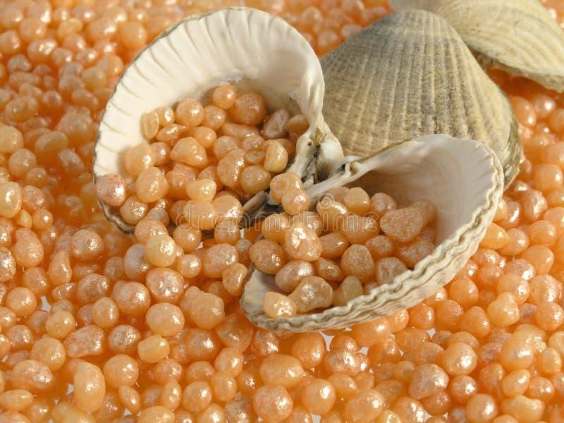 Caviar do banho - cuidado luxuoso do corpo fotografia de stock royalty free
