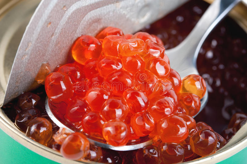 Caviar in metal can royalty free stock photography