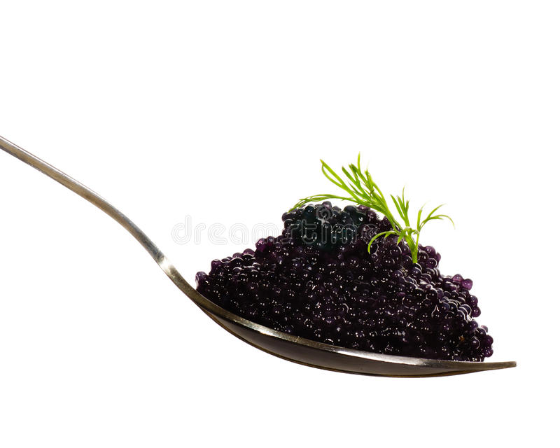 Caviar negro en una cuchara fotografía de archivo