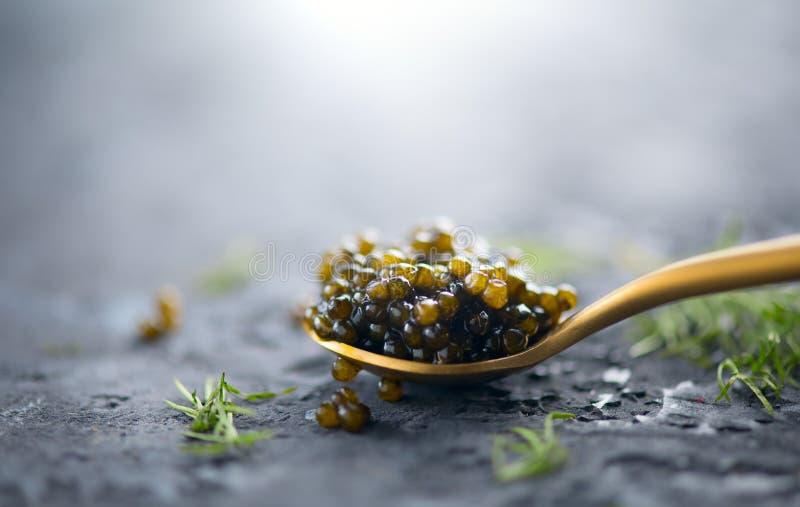 Caviar preto em uma colher no fundo escuro Close up natural do caviar do preto do esturjão fotografia de stock