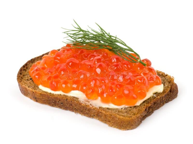 Caviar rojo con pan y mantequilla foto de archivo