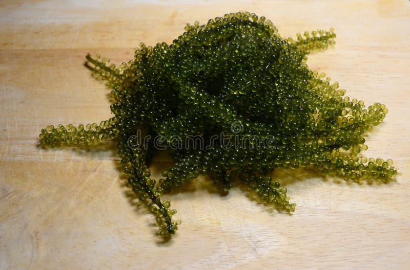 Caviar verde fotografía de archivo
