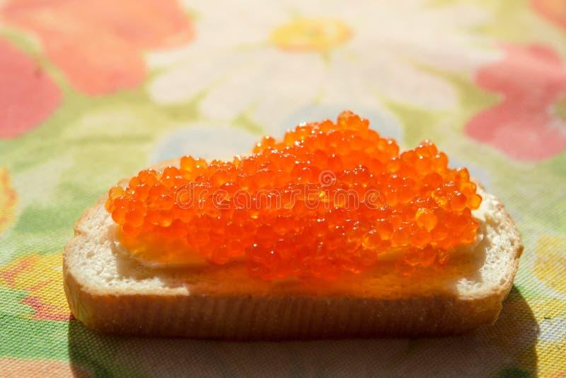 Caviar vermelho em um pão branco imagens de stock