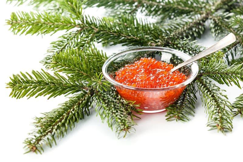Caviar vermelho Salmon fotografia de stock