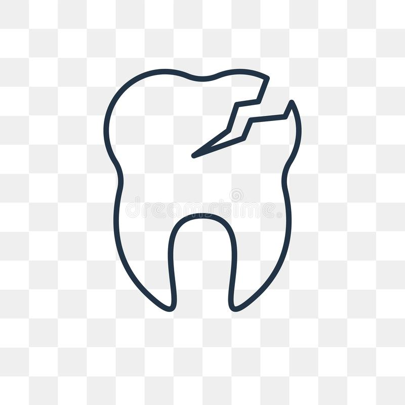 Cavities vector icon isolated on transparent background, linear. Cavities vector outline icon isolated on transparent background, high quality linear Cavities vector illustration