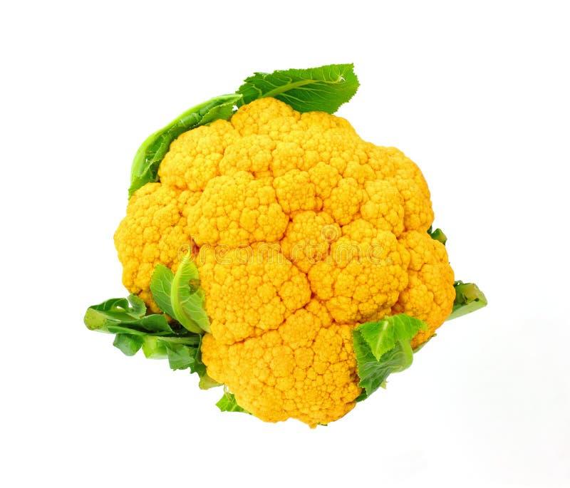 Cavolfiore arancione unico immagini stock