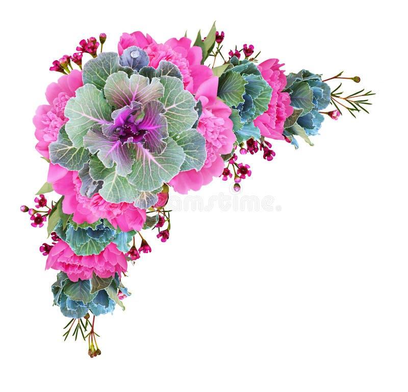 Cavoli ornamentali e fiori rosa della peonia in una disposizione d'angolo floreale fotografia stock