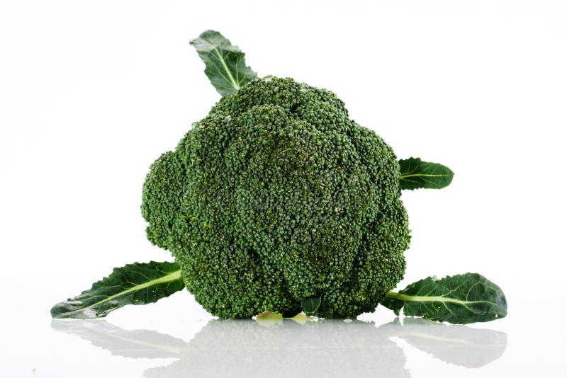 Cavolo del broccolo immagini stock