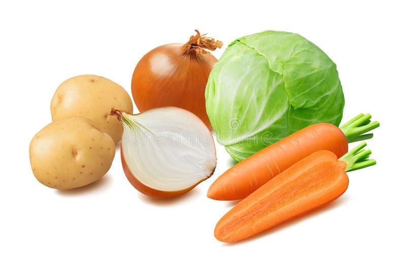 Cavolo fresco, patata, carota, verdure della cipolla isolate su fondo bianco fotografia stock libera da diritti