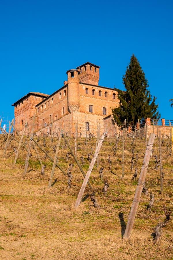 Cavour Castle στοκ φωτογραφία