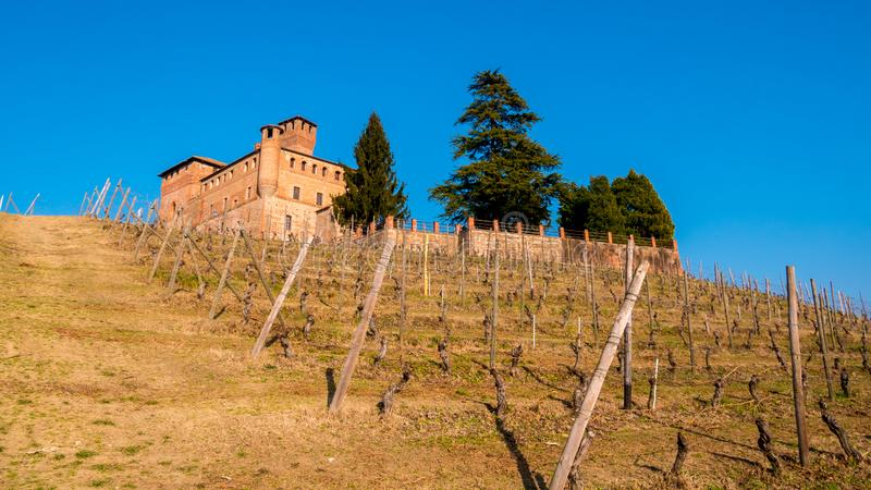 Cavour Castle royalty free stock image