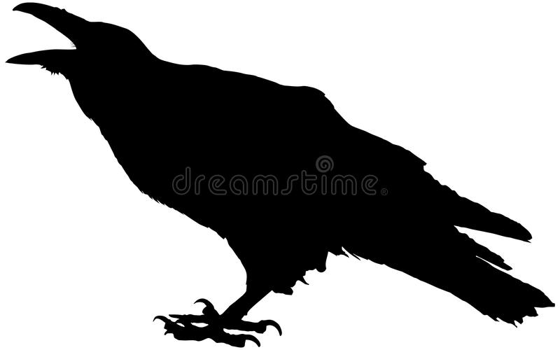 Cawing raven stock illustration