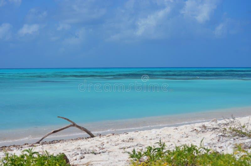 Cay de Bolivar fotografia de stock royalty free