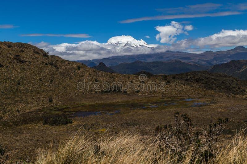 Cayambe-Koka-Reserve lizenzfreie stockbilder
