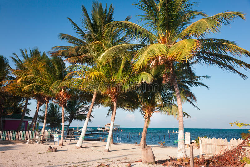 Caye doszczelniacz Belize zdjęcie royalty free