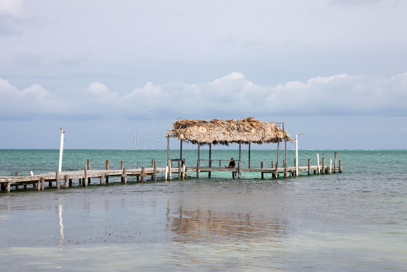 Cayebreeuwijzer, Belize stock foto's