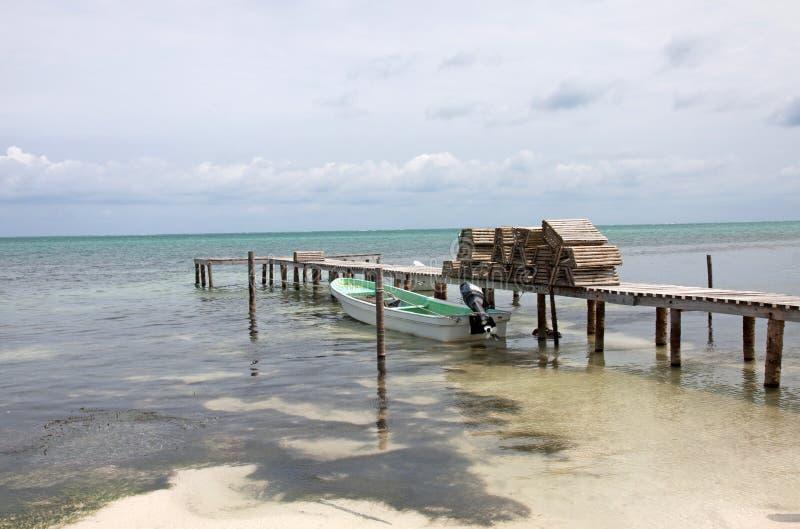Cayebreeuwijzer, Belize stock afbeeldingen