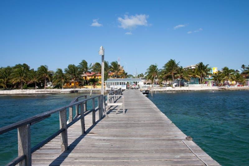 Cayebreeuwijzer, Belize royalty-vrije stock afbeelding