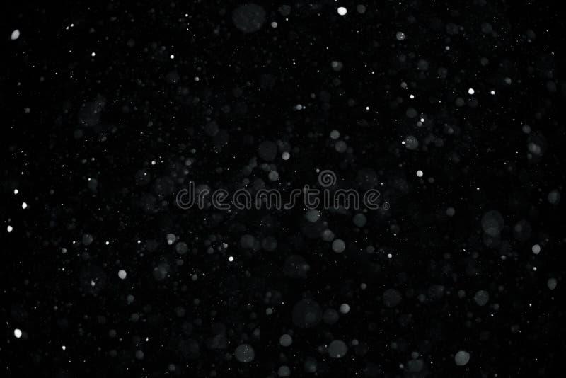 Cayendo abajo copos de nieve reales de izquierda a derecha, nieve tranquila, tiro en el fondo negro, mate, granangular, aislado imagenes de archivo