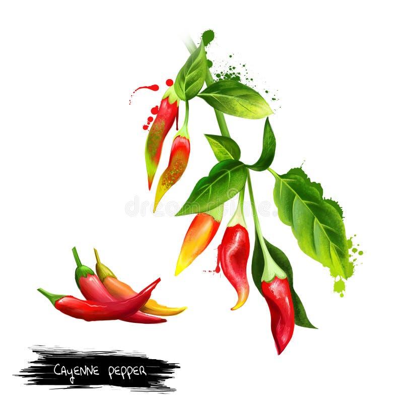 Cayenne Guinea krydda, Ko-horn peppar digital r?d twirl f?r abstactkonst djupt stock illustrationer