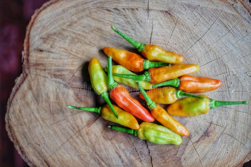 Cayenne pepper, an organic vegetable for spicy food flavoring. On a natural texture wood table stock image