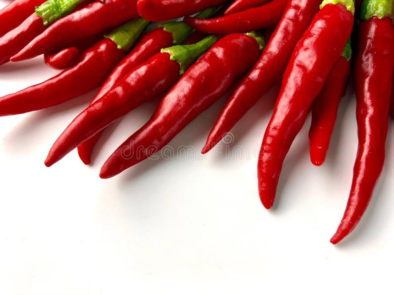 Cayenne peppers royalty free stock photography