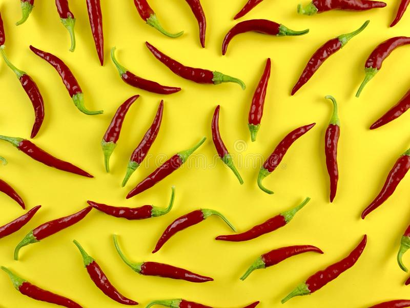Cayenne peppers royalty free stock photos