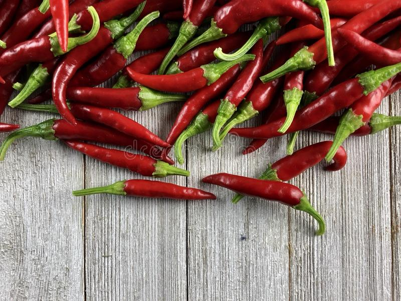Cayenne peppers royalty free stock photo