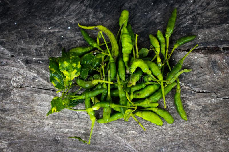 Cayennepfeffer-Grün und frisches stockfoto