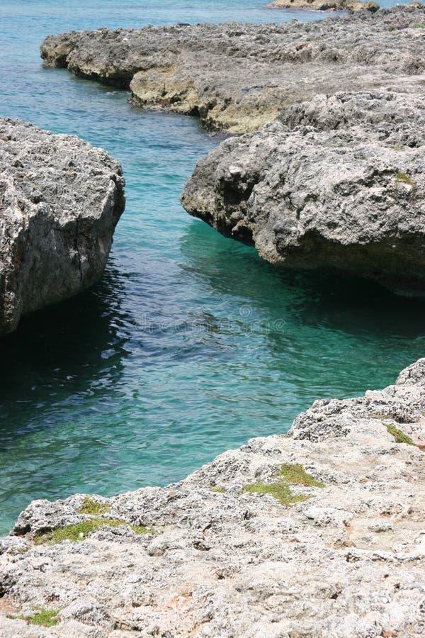 cayman ακτή στοκ φωτογραφία με δικαίωμα ελεύθερης χρήσης