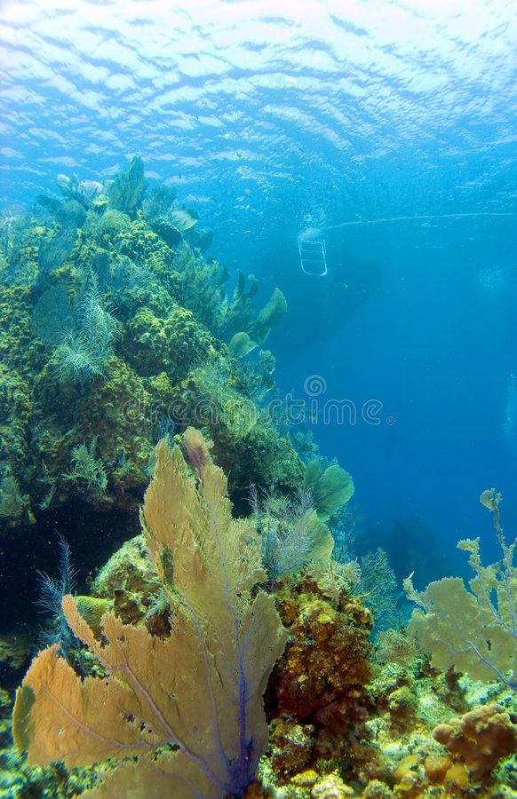 Cayman Brac Reef with Boat. Cayman Brac Reef with dive boat in the background stock image
