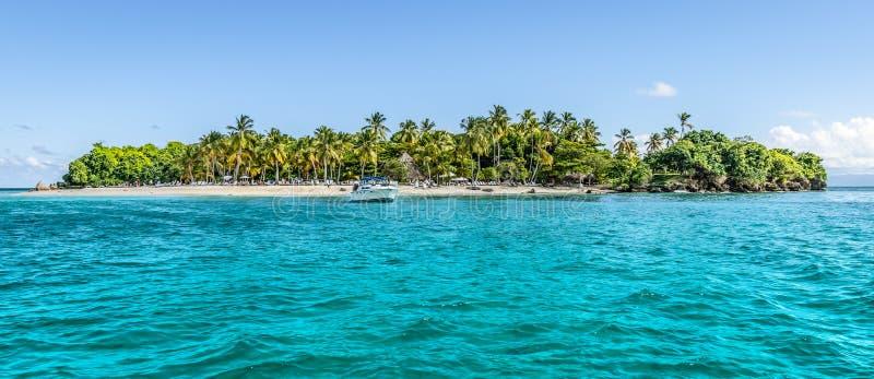 Cayo Levantado, Samana Bay, Dominikanska republiken Panoramisk syn på den karibiska ön med kokosnötspalmträd och vit sandstrand royaltyfri fotografi