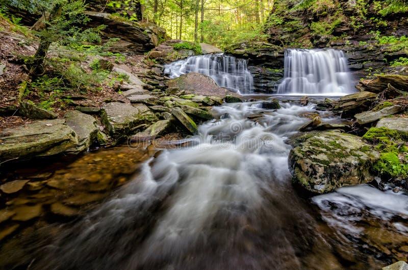 Cayuga-Fälle, Ricketts Glen State Park, PA lizenzfreie stockfotos