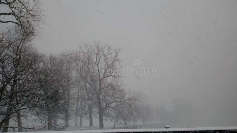 Caz Park Snow fotografia stock