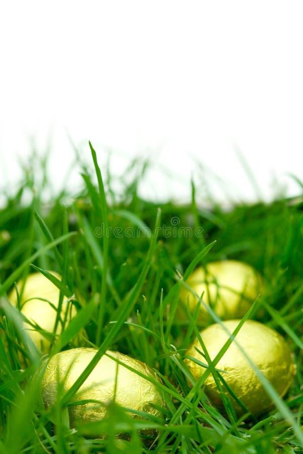 Caza del huevo de Pascua imágenes de archivo libres de regalías