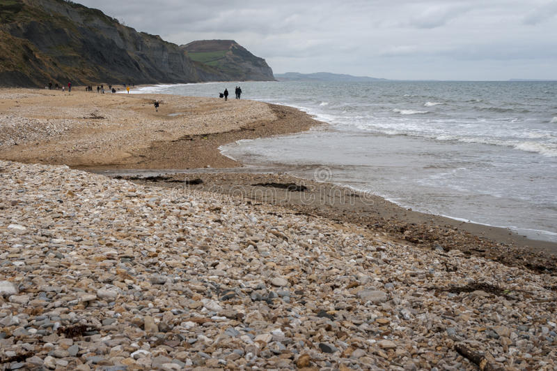 Caza fósil en Charmouth fotografía de archivo