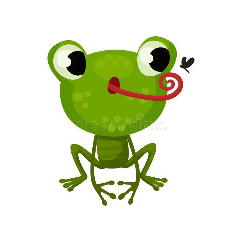 Caza linda de la rana en mosquito Icono plano del vector del sapo verde divertido Personaje de dibujos animados del animal anfibi libre illustration