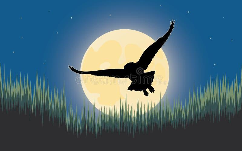 Cazador de la noche del buho stock de ilustración