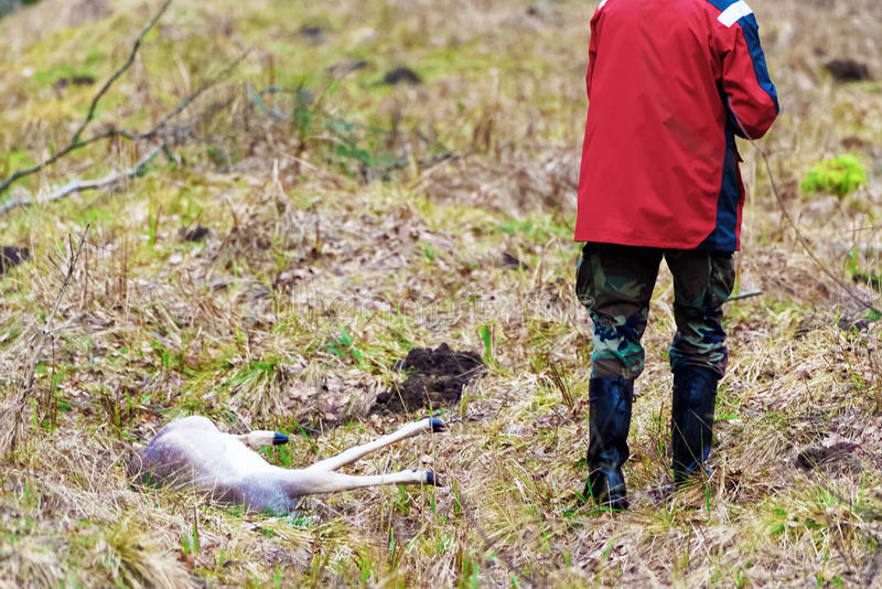 Cazador masculino con su trofeo en el bosque Báltico del otoño fotografía de archivo