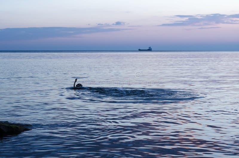 Cazador subacuático en la playa que se prepara para zambullirse Pesca en el Mar Negro fotografía de archivo libre de regalías