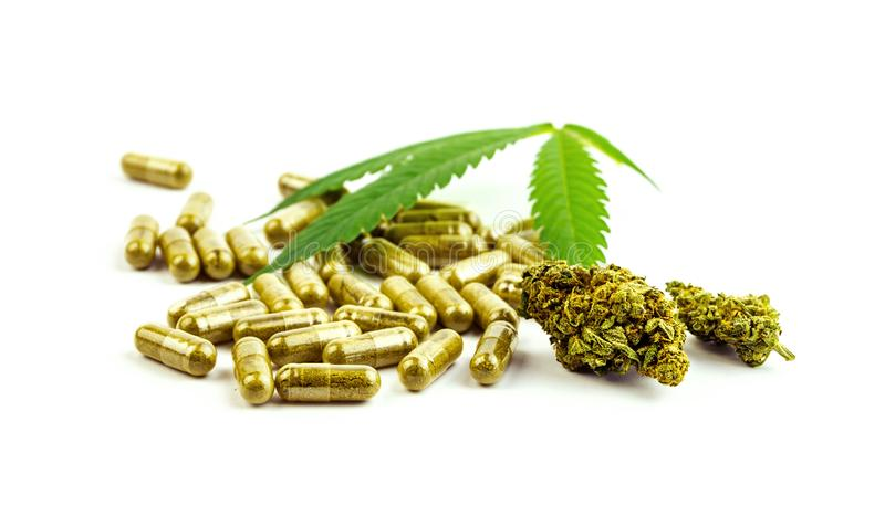 CBD大麻药片花蕾和大麻叶子 免版税图库摄影