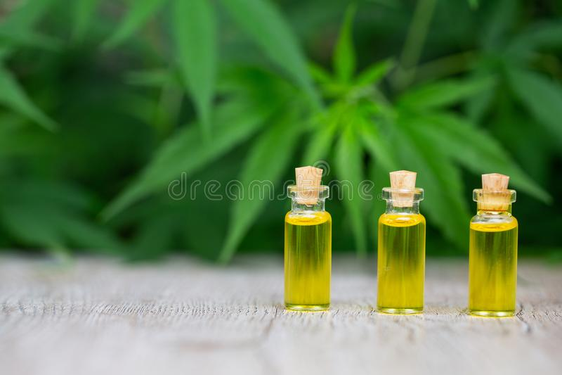 Cbd d'huile de chanvre, herbe de cannabis et feuilles pour le traitement, extrait d'huile de chanvre photo stock
