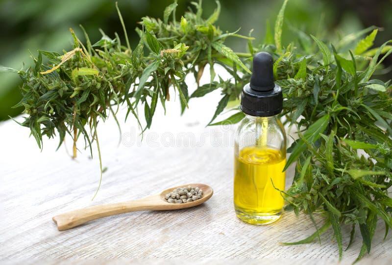 CBD oliwi? marihuana ekstrakt, Konopiane nafciane butelki i konopie kwitnie na drewnianym stole, Medyczny marihuany poj?cie zdjęcia stock