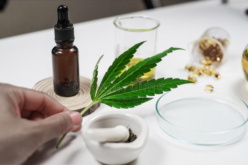 Cbd thc oil medical treatment in doctor laboratory. natural medicine on clinical research. Top view stock images
